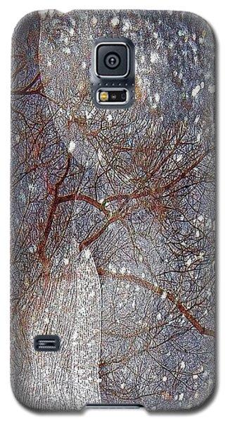 Asphalt - Portrait Of A Lady Galaxy S5 Case