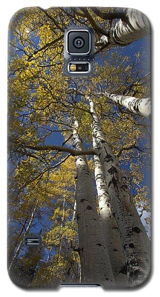 Aspirations Galaxy S5 Case by Anne Rodkin