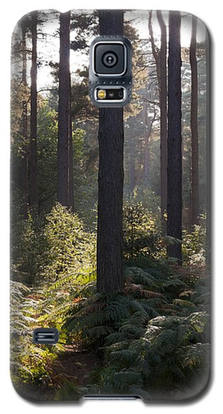Galaxy S5 Case featuring the photograph Aspley Woods by David Isaacson