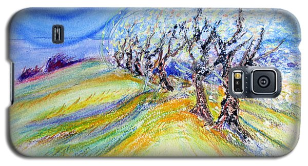 Assisi Wind Galaxy S5 Case