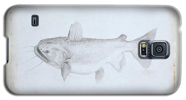 Catfish Galaxy S5 Case - Asterophysus Batrachus by Natural History Museum, London