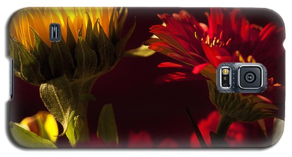 Asters In The Light Galaxy S5 Case