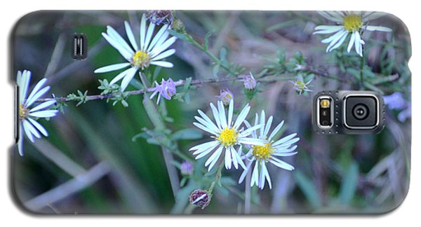 Asters Galaxy S5 Case
