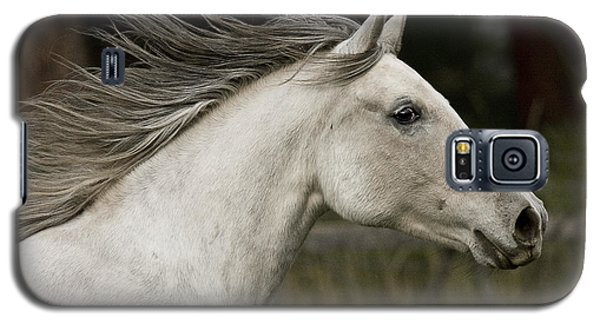 Galaxy S5 Case featuring the photograph At A Full Gallop D7796 by Wes and Dotty Weber