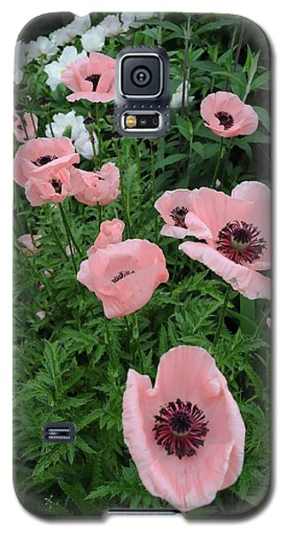 At Bridge Of Flowers  --  Massachusetts  Galaxy S5 Case