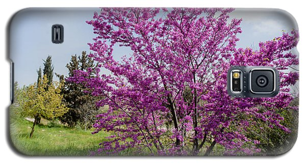 Galaxy S5 Case featuring the photograph At Full Blossom by Uri Baruch