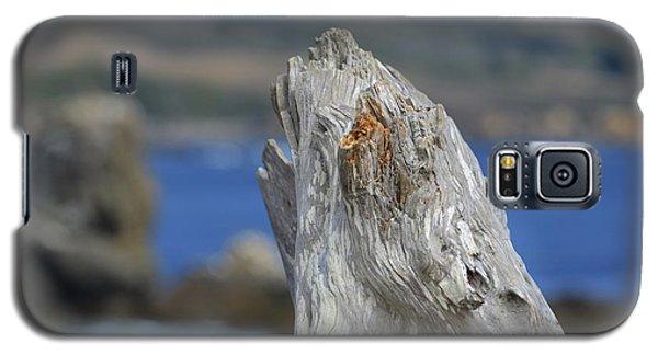 At Pillar Point  Galaxy S5 Case by Alex King