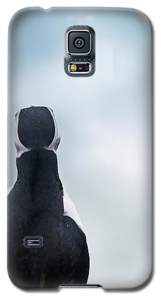 Atlantic Puffin Fratercula Arctica Galaxy S5 Case