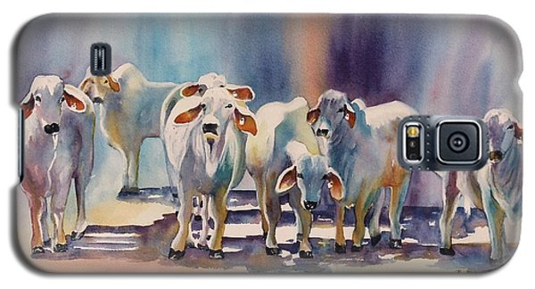 Attention All Ears.  Brahman Bulls Galaxy S5 Case by Roxanne Tobaison