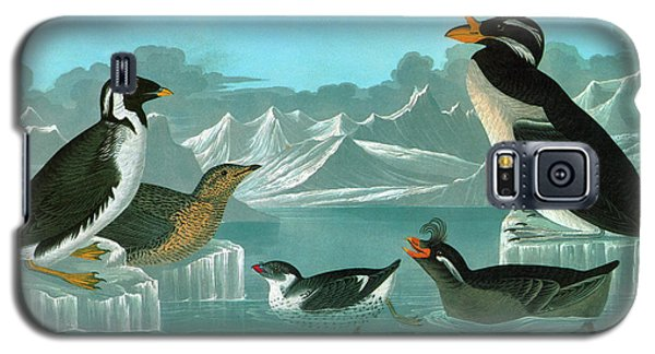Audubon Auks Galaxy S5 Case by Granger