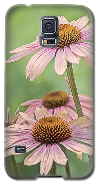 August Coneflowers Galaxy S5 Case