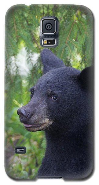 Galaxy S5 Case featuring the photograph August Coy by Gerry Sibell