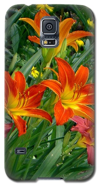 Lilies Galore Galaxy S5 Case