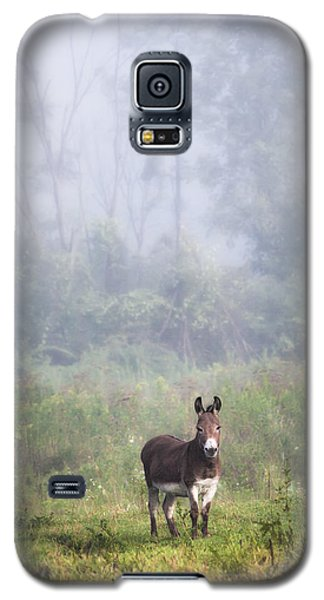 August Morning - Donkey In The Field. Galaxy S5 Case