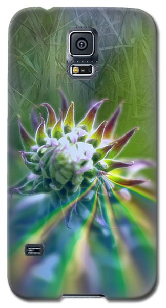 Galaxy S5 Case featuring the photograph Aura by Adria Trail