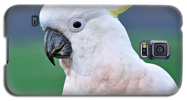 Australian Birds - Cockatoo Galaxy S5 Case by Kaye Menner
