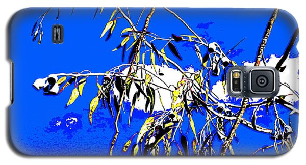 Galaxy S5 Case featuring the photograph Australian Plant by Roberto Gagliardi