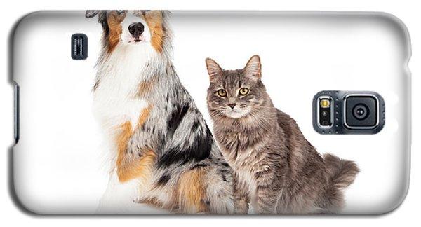 Australian Shepherd Dog And Tabby Cat Galaxy S5 Case