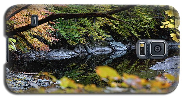 Autum In Philadelphia Galaxy S5 Case by Dorin Adrian Berbier