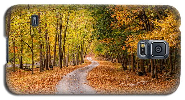 Autum Path Galaxy S5 Case by Melinda Ledsome