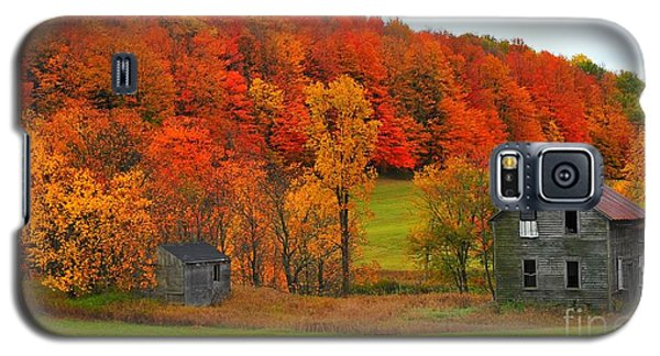 Galaxy S5 Case featuring the photograph Autumn Abandoned by Terri Gostola