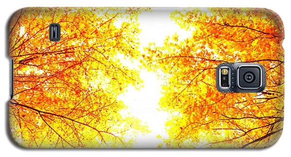 Autumn Abstract Galaxy S5 Case by Tim Good