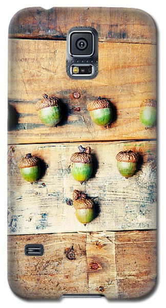 Galaxy S5 Case featuring the photograph Autumn Acorns by Kim Fearheiley