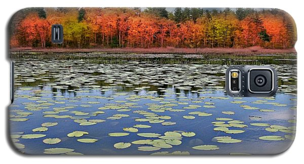 Autumn Across The Pond Galaxy S5 Case by Barbara S Nickerson