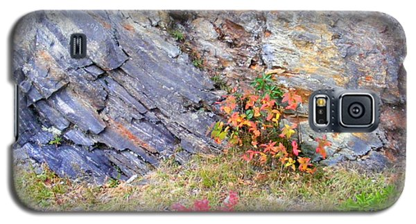Autumn And Rocks Galaxy S5 Case