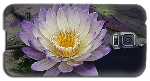 Autumn Aquatic Bloom Galaxy S5 Case