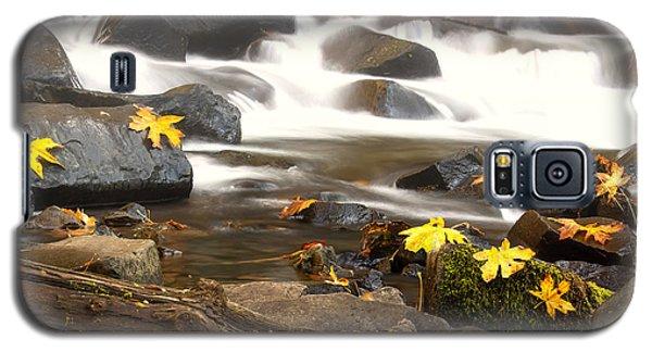 Autumn At Bridal Veil Galaxy S5 Case