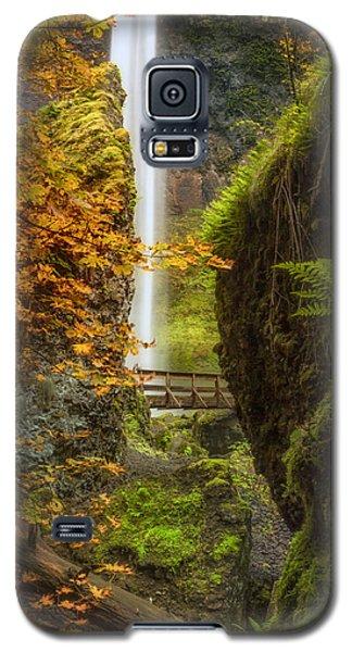 Autumn At Elowah Galaxy S5 Case