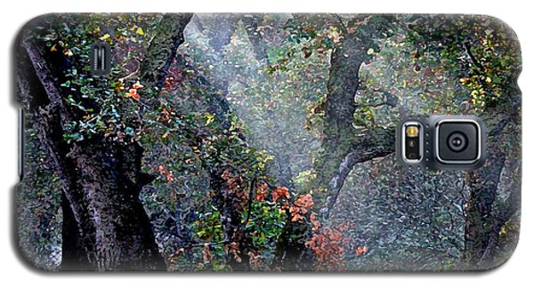 Autumn At First Light Galaxy S5 Case