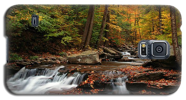 Galaxy S5 Case featuring the photograph Autumn At Ricketts Glen by Dan Myers
