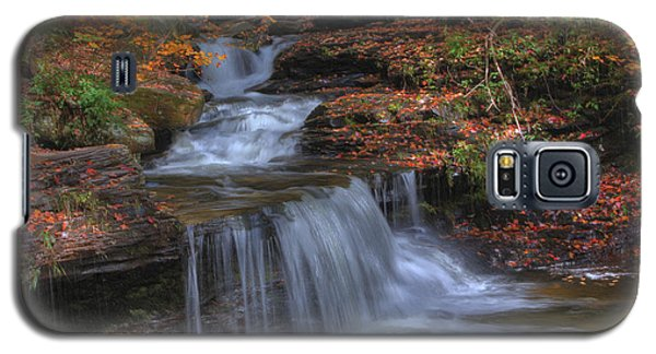 Autumn At Ricketts Glen Galaxy S5 Case