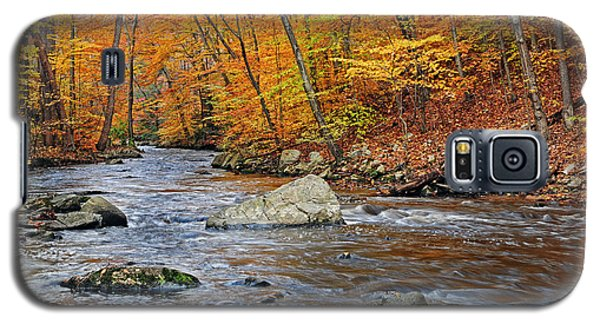 Autumn At The Black River Galaxy S5 Case