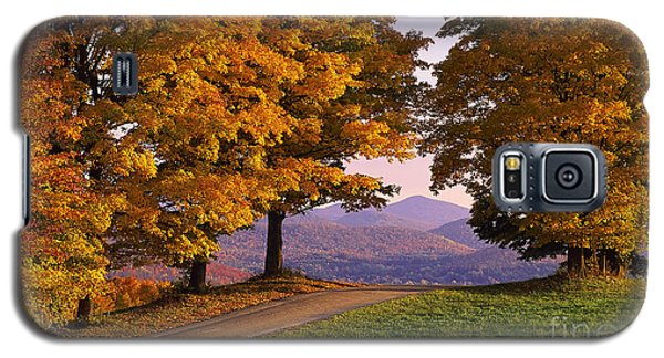 Autumn Backroad View Galaxy S5 Case by Alan L Graham