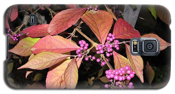 Autumn Beauty Berry Galaxy S5 Case by Marlene Rose Besso