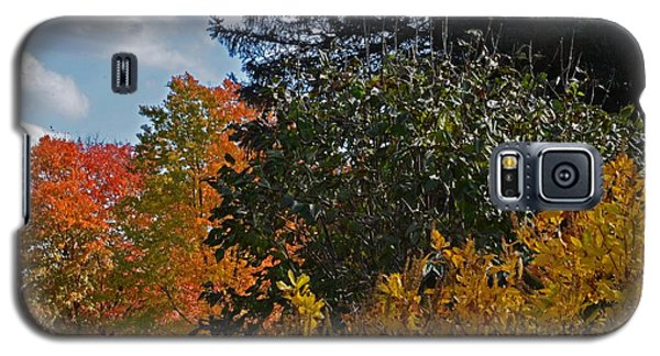 Galaxy S5 Case featuring the photograph Autumn Beauty by Judy Wolinsky