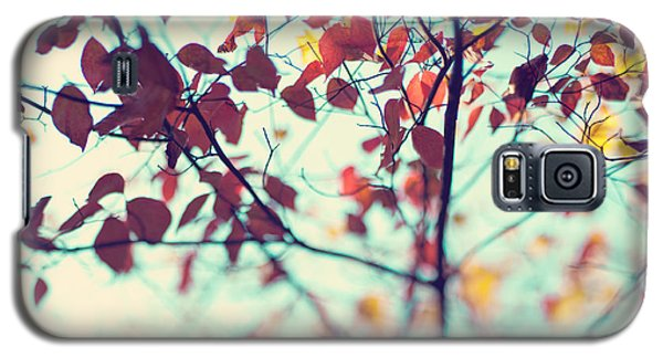 Galaxy S5 Case featuring the photograph Autumn Beauty by Kim Fearheiley