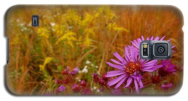 Autumn Blush Galaxy S5 Case by Tim Good