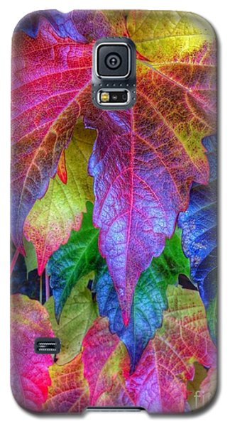 Autumn Bold Galaxy S5 Case