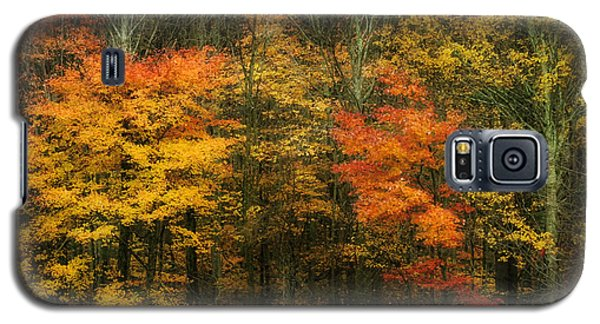 Galaxy S5 Case featuring the photograph Autumn Bright by Joan Bertucci