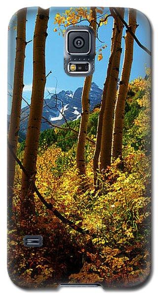 Autumn Brilliance 2 Galaxy S5 Case
