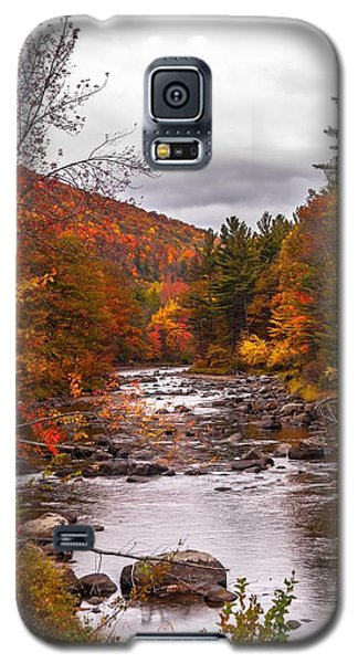 Autumn Brook Galaxy S5 Case