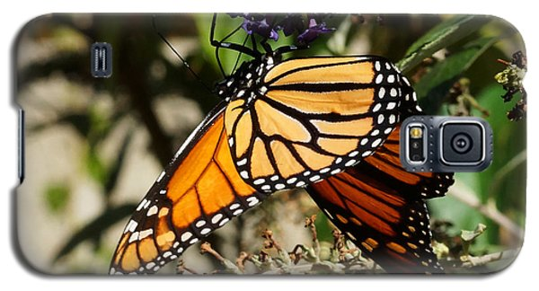 Autumn Butterfly Galaxy S5 Case