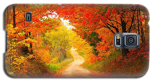 Galaxy S5 Case featuring the photograph Autumn Cameo 2 by Terri Gostola