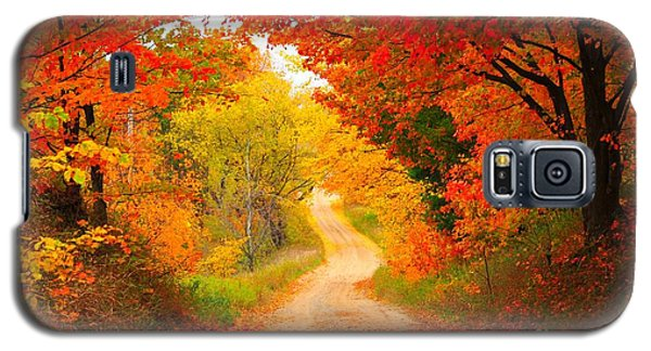 Galaxy S5 Case featuring the photograph Autumn Cameo Road by Terri Gostola