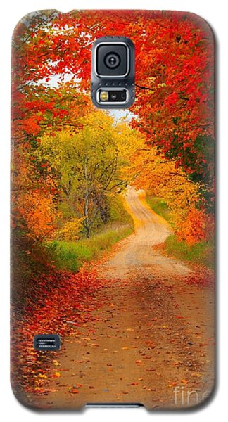 Galaxy S5 Case featuring the photograph Autumn Cameo by Terri Gostola