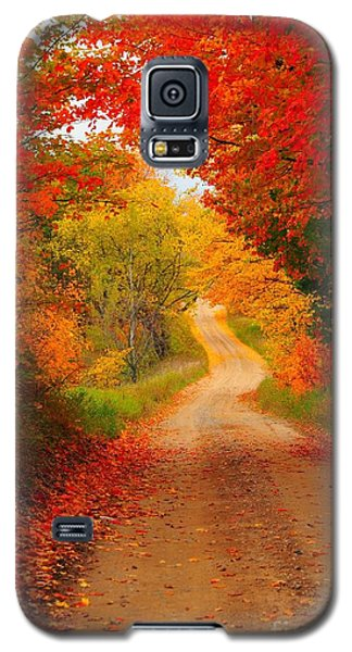 Autumn Cameo Galaxy S5 Case